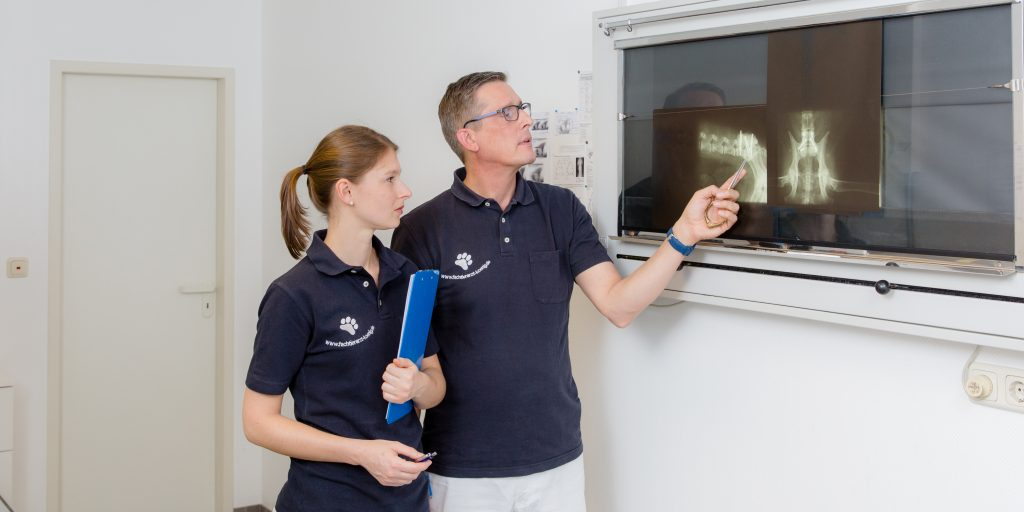 [:de]Fachtierarzt Dr. König und seine Assistentin betrachten ein Röntgenbild[:]